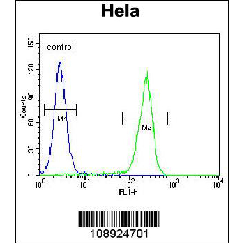 CRFR2D antibody (OAAB07558) in Hela cells using Flow Cytometry